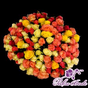 Rožu mix big 100eur