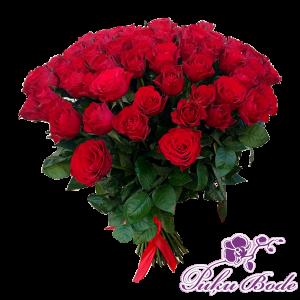 Sārtais rozu puskis 70eur