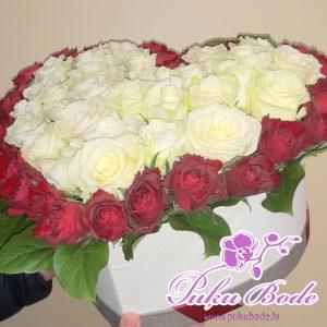 Ziedu kārbiņa TU ESI MANA !Cena 79.90eur.piezīmēsRozes sarkans ar baltu ,daudzums 67gb Ziedu kārbiņās ir iespēja arī pēc Jūsu vēlmēm ko mainīt ,piem.,ziedu krāsu ,daudzumu u.t.t.,iepriekš sazinies.