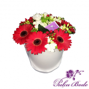 Ziedu karbiņa Paldies Tev Cena 35.00eur piezīmes Gerberas 7gb ,Frēzijas 13gb un zaļumi.Piezīmēs Ziedu kārbiņās ir iespēja arī pēc Jūsu vēlmēm ko mainīt ,piem.,ziedu krāsu ,daudzumu u.t.t.,iepriekš sazin